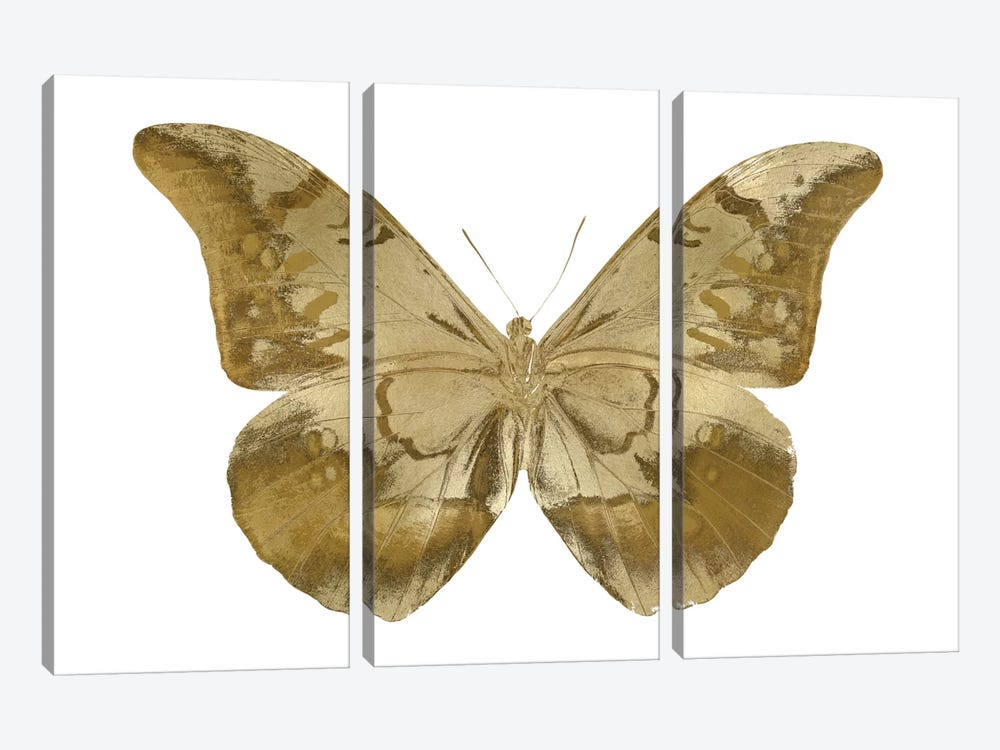Golden Butterfly III by Julia Bosco 3-piece Canvas Art Print