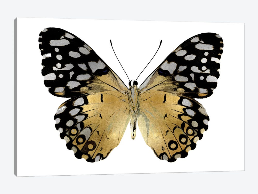 Golden Butterfly IV 1-piece Canvas Art