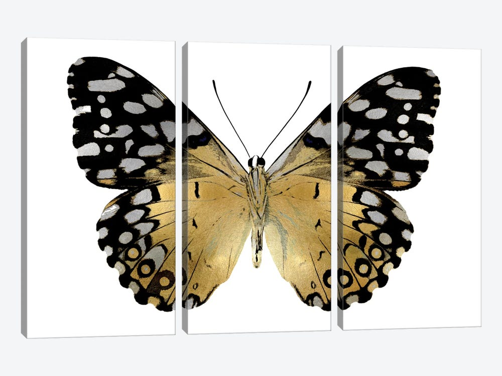 Golden Butterfly IV by Julia Bosco 3-piece Canvas Wall Art