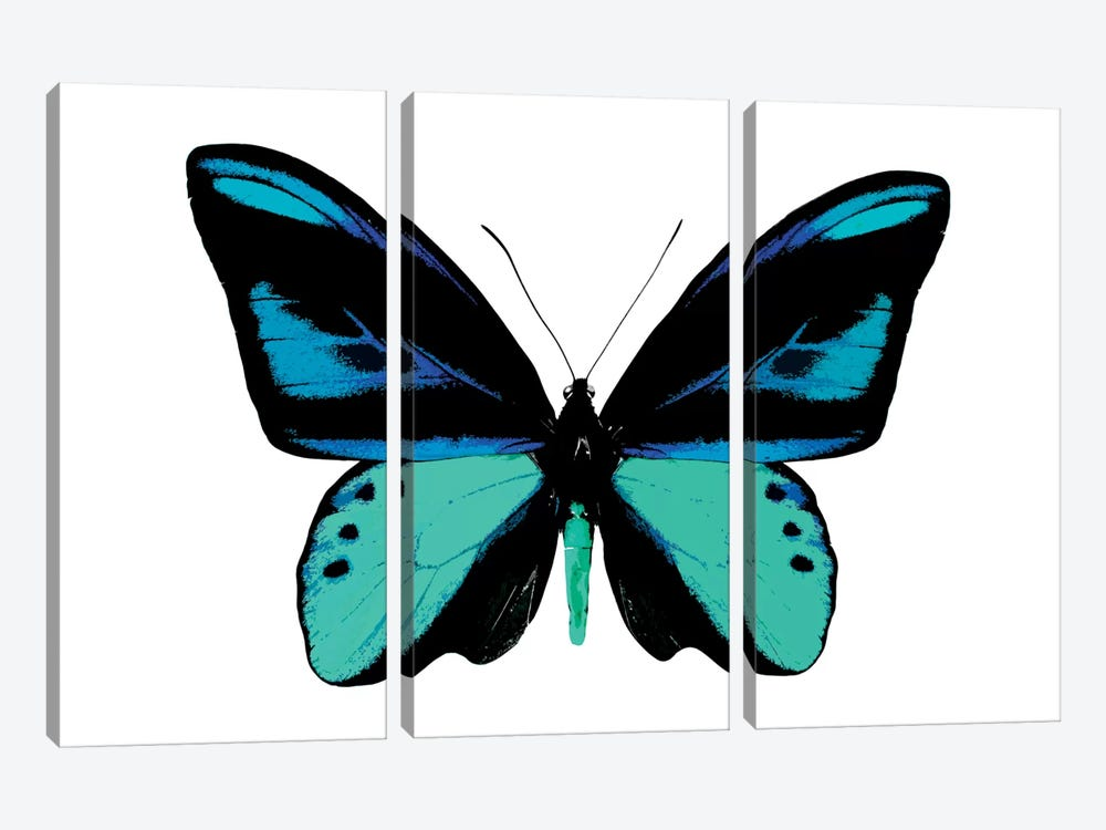 Vibrant Butterfly I by Julia Bosco 3-piece Canvas Artwork