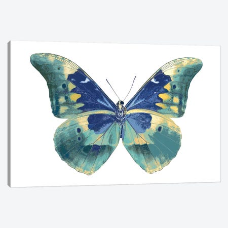 Butterfly In Aqua I Canvas Print #JUL4} by Julia Bosco Art Print