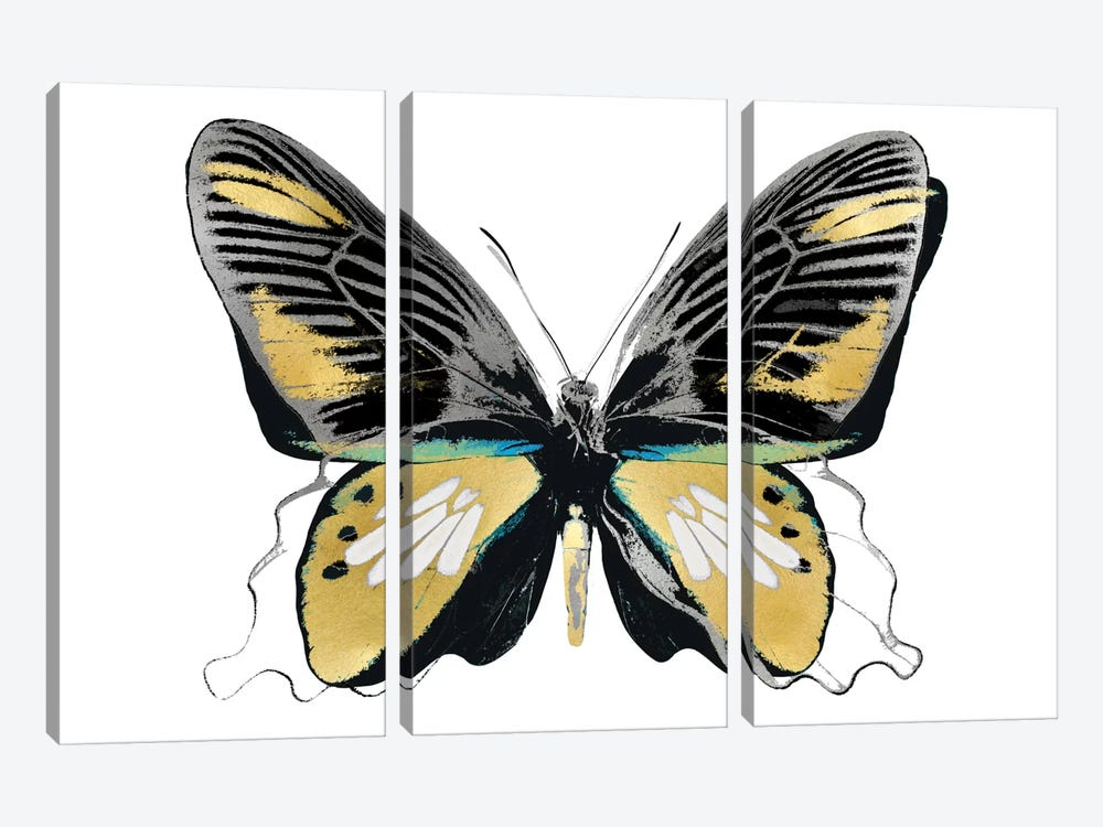 Vibrant Butterfly VI by Julia Bosco 3-piece Canvas Print