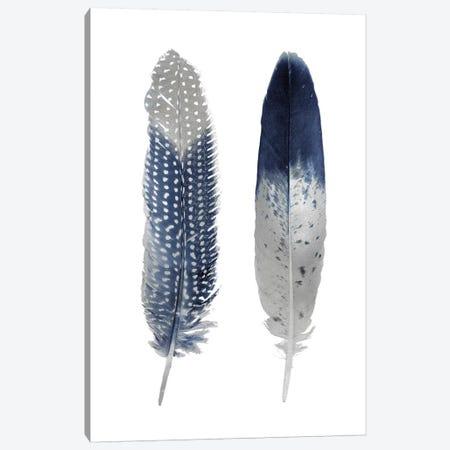 Blue Feather Pair On White Canvas Print #JUL56} by Julia Bosco Canvas Art Print