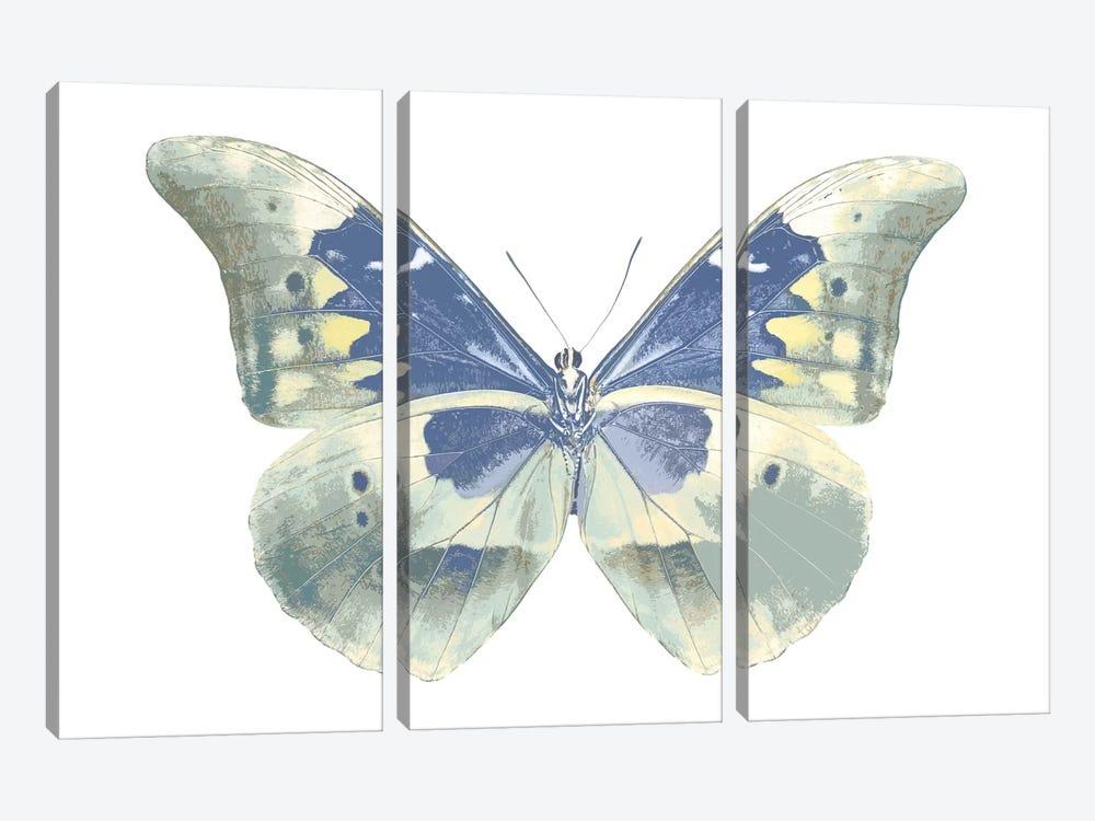 Butterfly In Aqua II by Julia Bosco 3-piece Canvas Wall Art