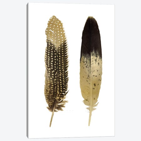 Gold Feather Pair On White Canvas Print #JUL60} by Julia Bosco Art Print