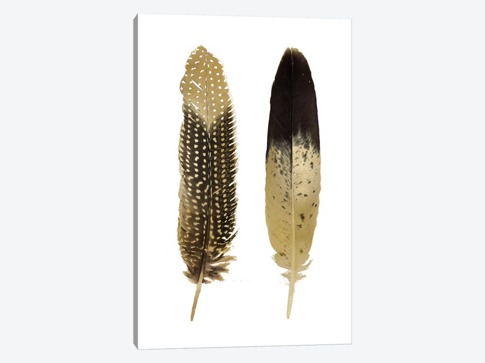 Gold Feather Pair On White by Julia Bosco 1-piece Canvas Print