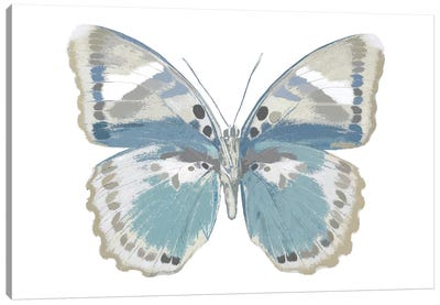 Butterfly In Green And Indigo Canvas Art Print
