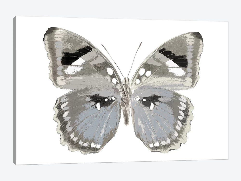 Butterfly In Grey II 1-piece Canvas Art Print