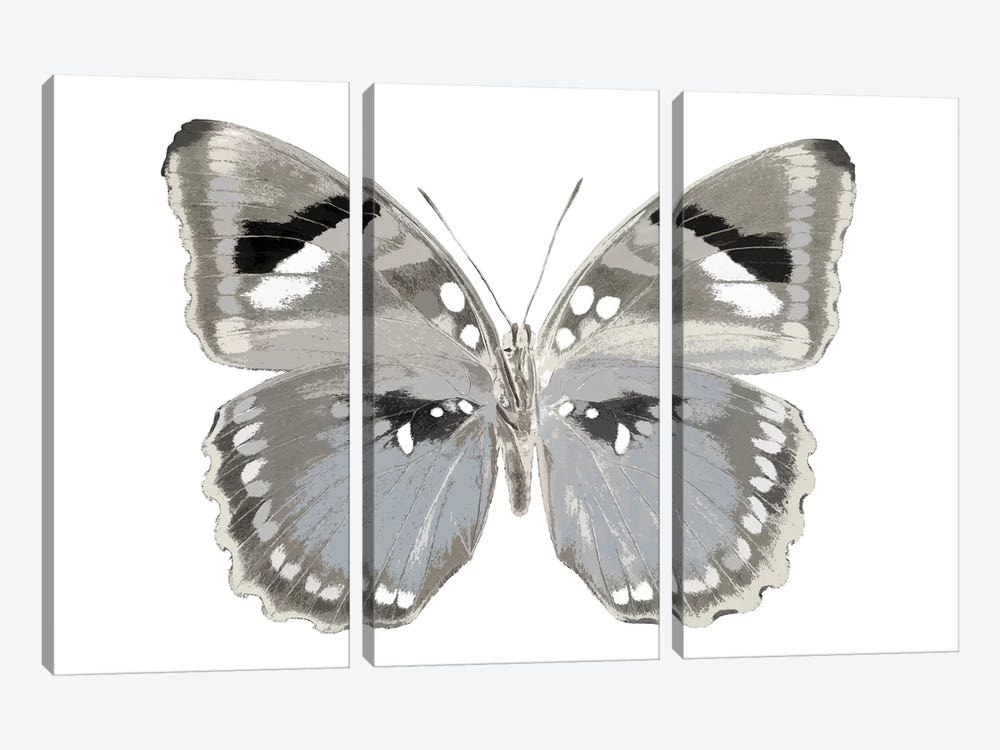 Butterfly In Grey II by Julia Bosco 3-piece Art Print