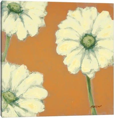 Floral Cache III Canvas Art Print