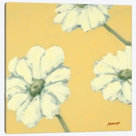 Floral Cache IV Canvas Print #JUM11} by Julianne Marcoux Canvas Art Print