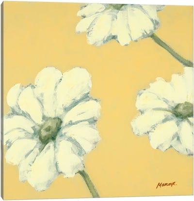 Floral Cache IV Canvas Art Print