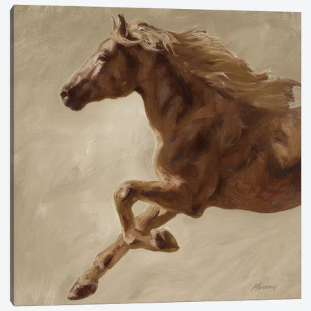 Trot Canvas Print #JUM15} by Julianne Marcoux Canvas Wall Art