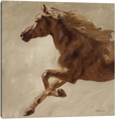 Trot Canvas Art Print