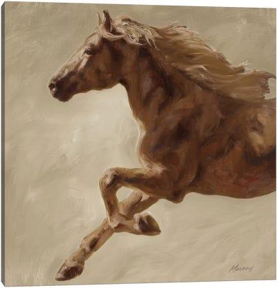 Trot Canvas Art Print