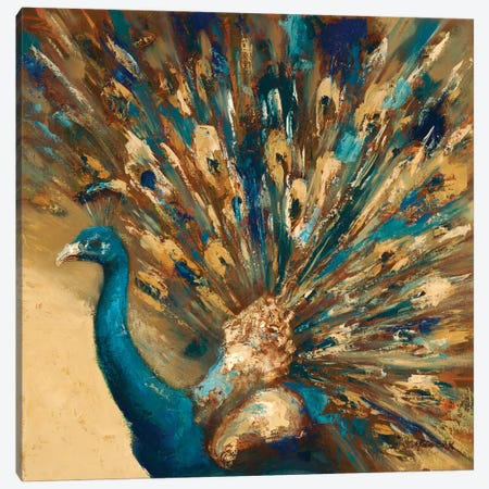 Proud Peacock Canvas Print #JUM16} by Julianne Marcoux Canvas Artwork