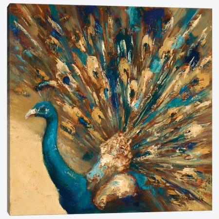 Proud Peacock Canvas Print #JUM16} by Julianne Marcoux Canvas Artwork