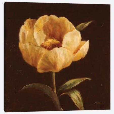 Floral Symposium I Canvas Print #JUM17} by Julianne Marcoux Canvas Wall Art