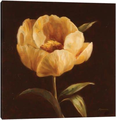 Floral Symposium I Canvas Art Print