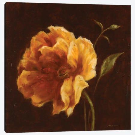 Floral Symposium II Canvas Print #JUM18} by Julianne Marcoux Canvas Print