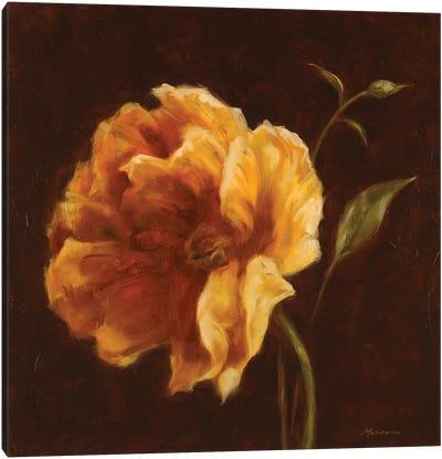 Floral Symposium II Canvas Art Print