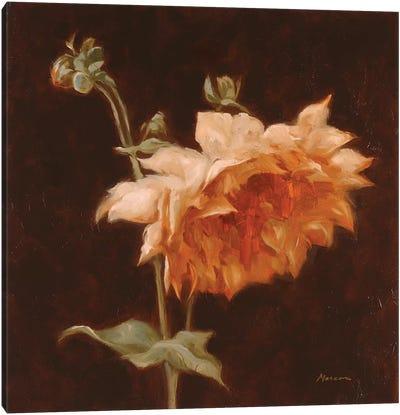 Floral Symposium III Canvas Art Print