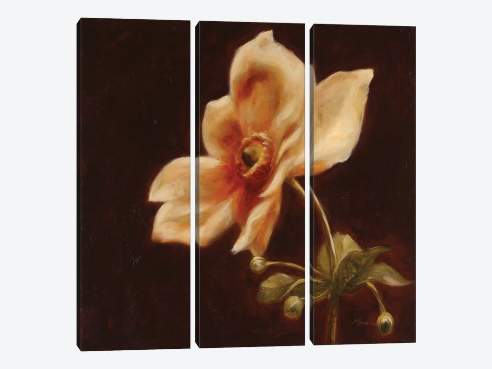 Floral Symposium IV by Julianne Marcoux 3-piece Canvas Wall Art