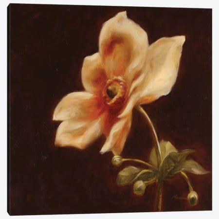 Floral Symposium IV Canvas Print #JUM20} by Julianne Marcoux Canvas Artwork