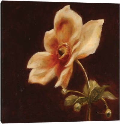 Floral Symposium IV Canvas Art Print