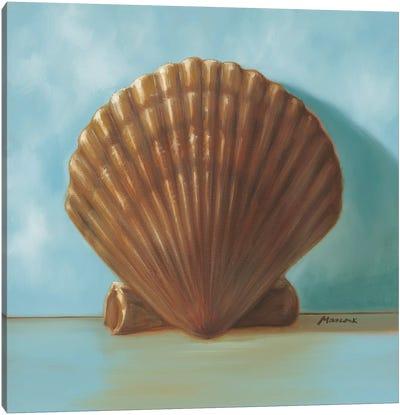 Shells III Canvas Art Print