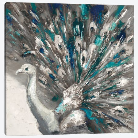 Proud Peacock II Canvas Print #JUM28} by Julianne Marcoux Canvas Artwork