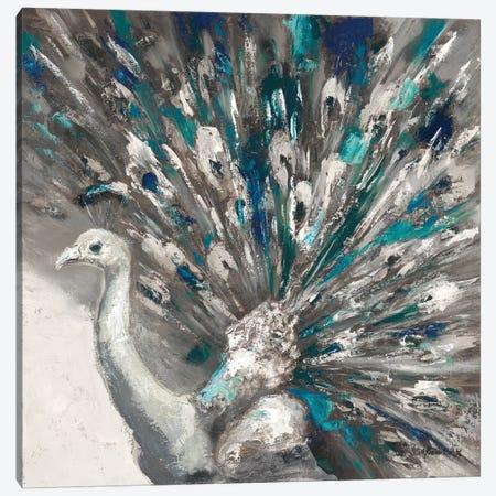 Proud Peacock II Canvas Print #JUM28} by Julianne Marcoux Canvas Artwork