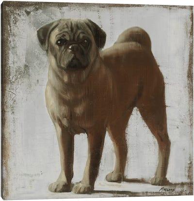 Pug Canvas Art Print