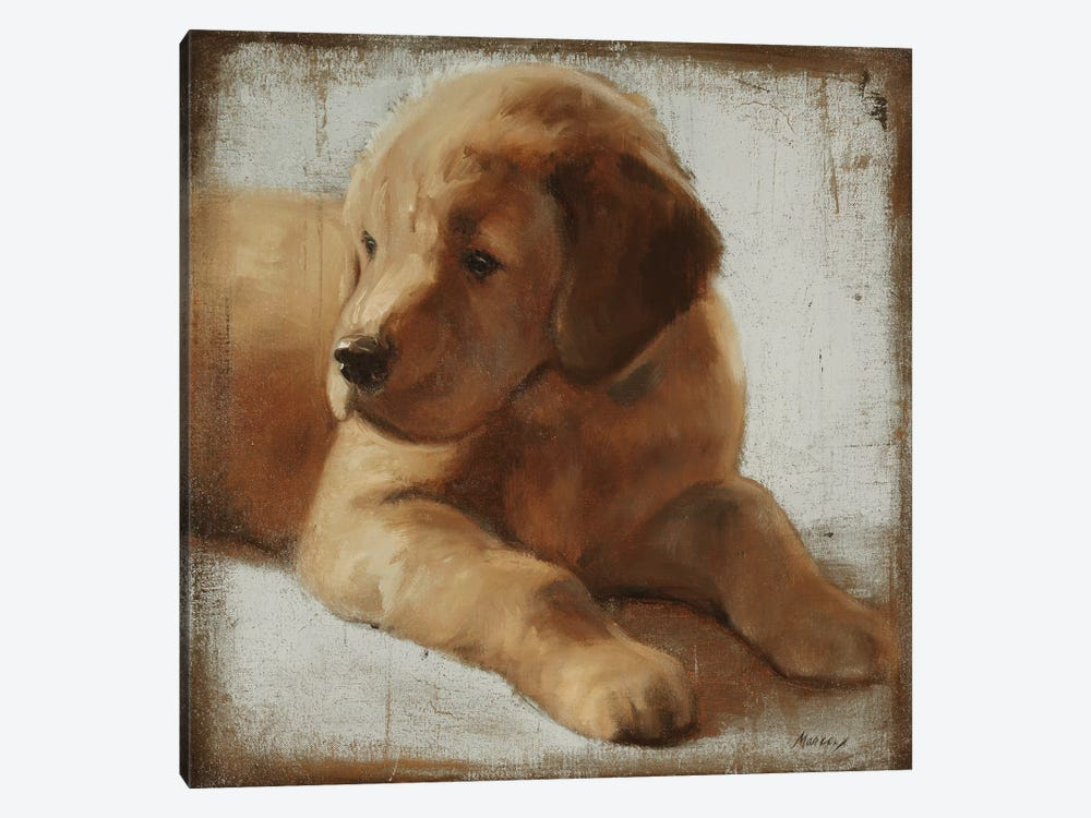 Retriever by Julianne Marcoux 1-piece Art Print