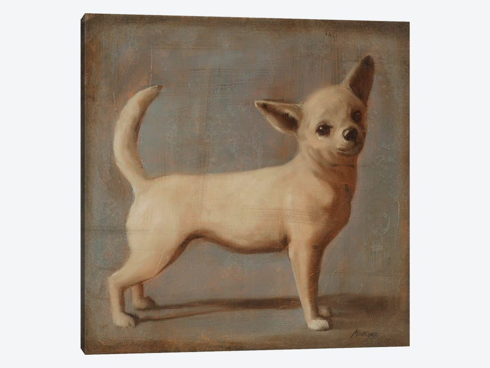 Chihuahua II 1-piece Canvas Wall Art