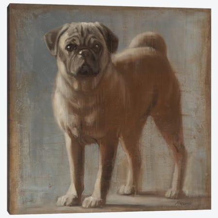 Pug II Canvas Print #JUM33} by Julianne Marcoux Canvas Art Print