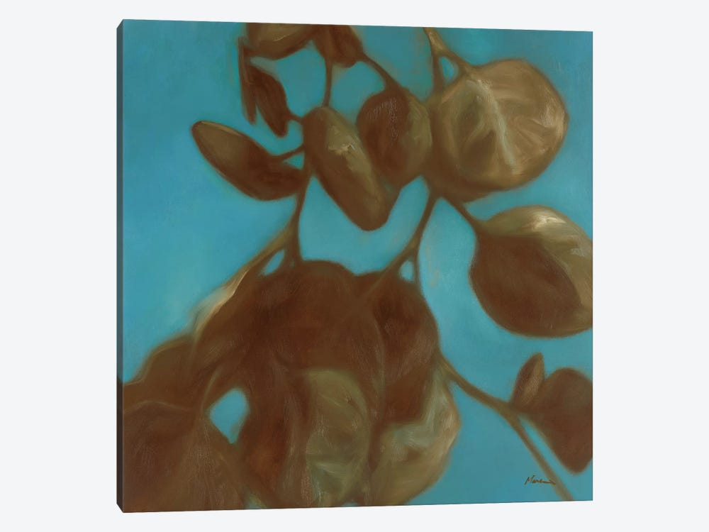 Eucalyptus II by Julianne Marcoux 1-piece Canvas Art Print