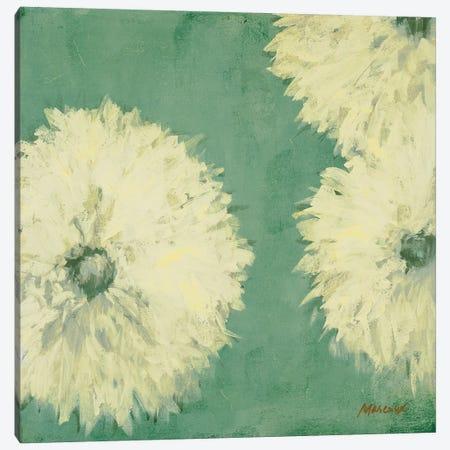 Floral Cache II Canvas Print #JUM9} by Julianne Marcoux Canvas Print
