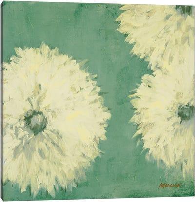 Floral Cache II Canvas Art Print