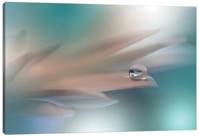 White Symphony.. Canvas Art Print