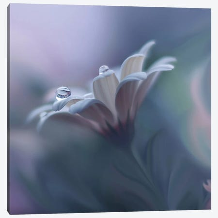 Behind Closed Eyes... Canvas Print #JUN1} by Juliana Nan Canvas Wall Art