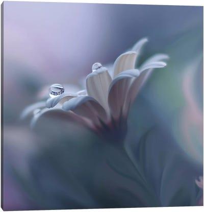 Behind Closed Eyes... Canvas Art Print