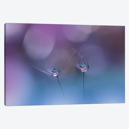 Drops 3-Piece Canvas #JUN5} by Juliana Nan Canvas Print