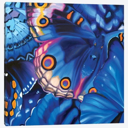 Taking A Chance Butterflies Canvas Print #JUY31} by Julia Ryan Canvas Print