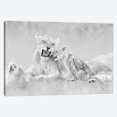 I Love You Canvas Print #JUZ5} by Jun Zuo Canvas Wall Art