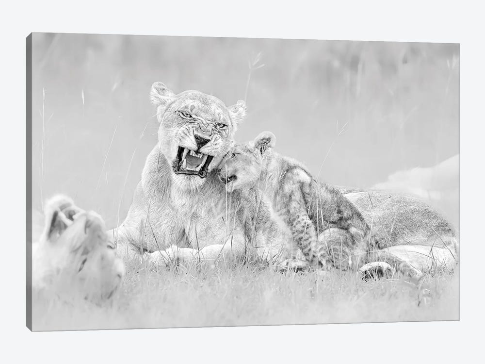 I Love You by Jun Zuo 1-piece Canvas Wall Art