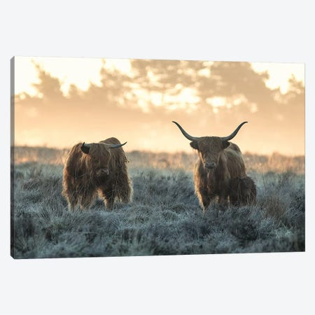 Three Highlanders 3-Piece Canvas #JVD5} by Jaap Van Den Canvas Art