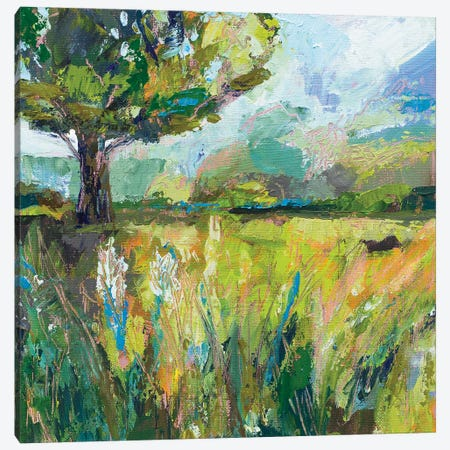 Wildflowers v2 Canvas Print #JVE123} by Jeanette Vertentes Canvas Artwork