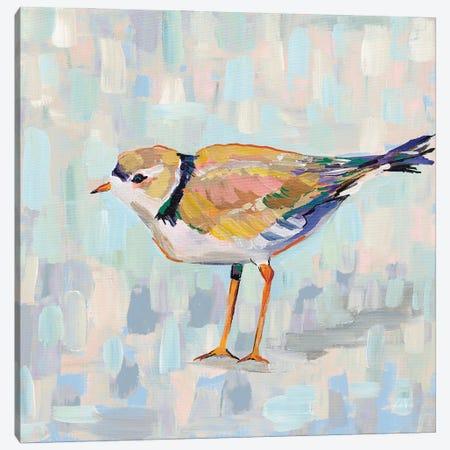 Coastal Plover IV v2 Neutral Canvas Print #JVE128} by Jeanette Vertentes Canvas Wall Art