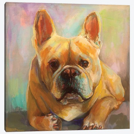 Frenchie Canvas Print #JVE23} by Jeanette Vertentes Canvas Art